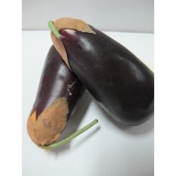 สือการเรียนการสอนผักผลไม้(มะเขือม่วง) 2060-3