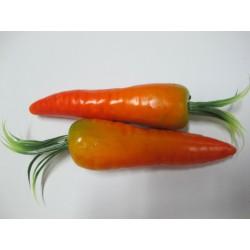 สือการเรียนการสอนผักผลไม้(แครอท) 2060-2
