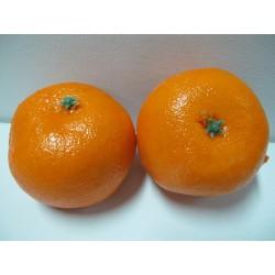 สือการเรียนการสอนผักผลไม้(ส้มจีน) 2061-2